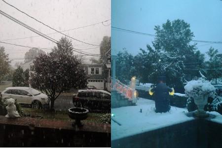 2011-10-29.jpg